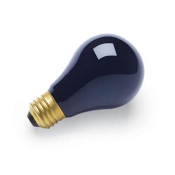Replacement Black Light Bulb 75 Watts / 230V