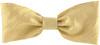 Dupioni Silk Ribbon - Champagne