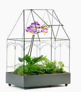 H Potter Glass Terrarium For Sale - Planter - Display Case