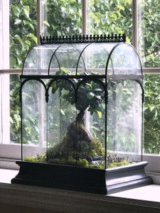 H Potter Barrel Vault Wardian Case Terrarium for sale