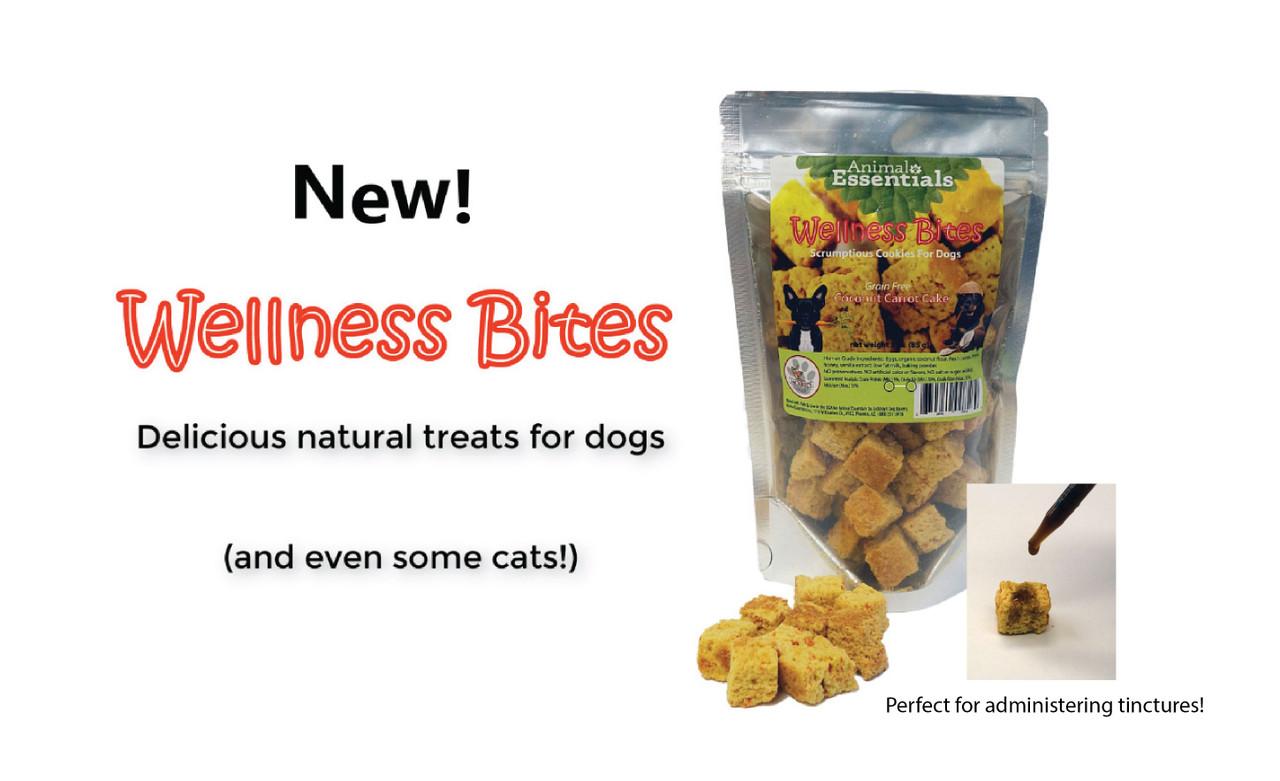 NEW!  Coconut Carrot Cake Wellness Bites!