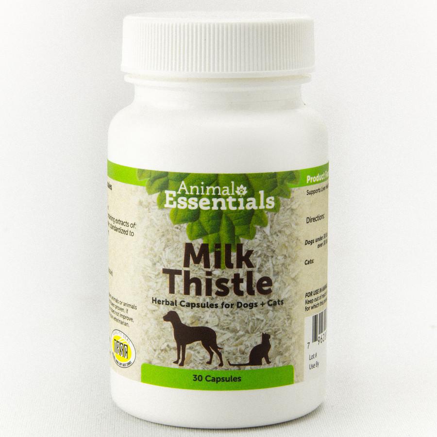 Milk Thistle - 30 Caps