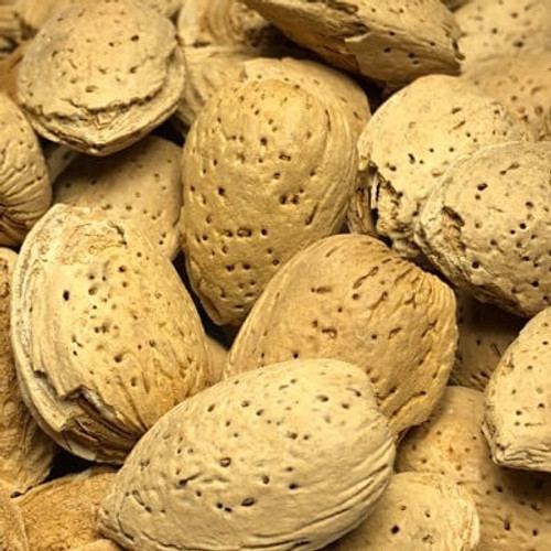 California In Shell Almonds   Raw Nuts   Sold Bulk by the Pound (LB)