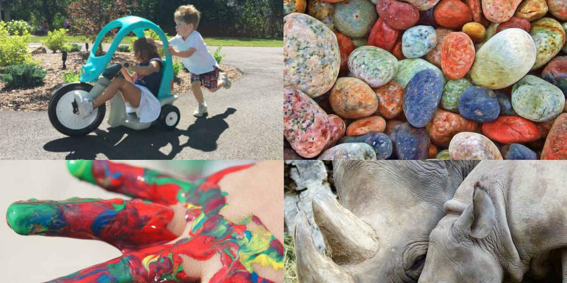 7 Outdoor Activities from Our Summer Bucket List