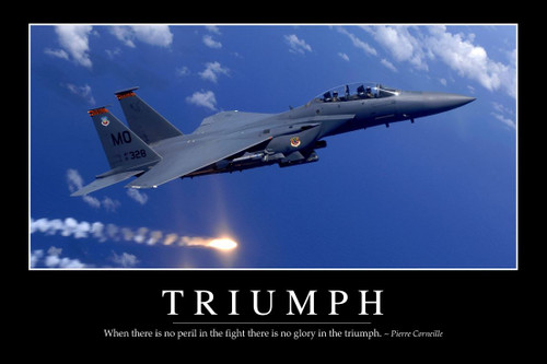 """TRIUMPH""  MOTIVATIONAL  METAL SIGN"