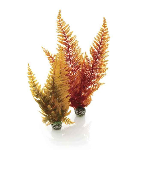 biOrb Aquatic Autumn Fern Set 2