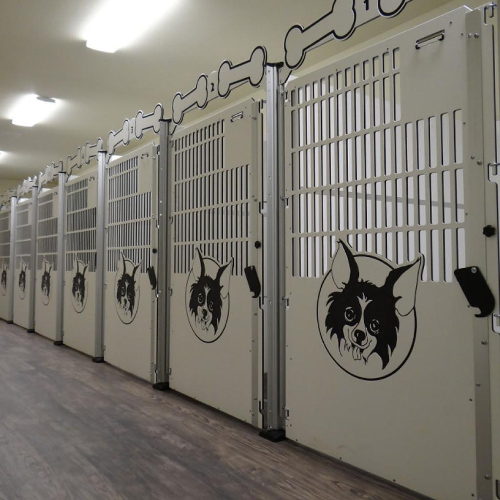 Large dog kennel gates.