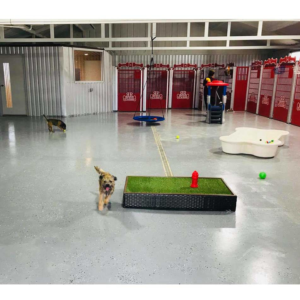 Large dog kennels with play-yard area.