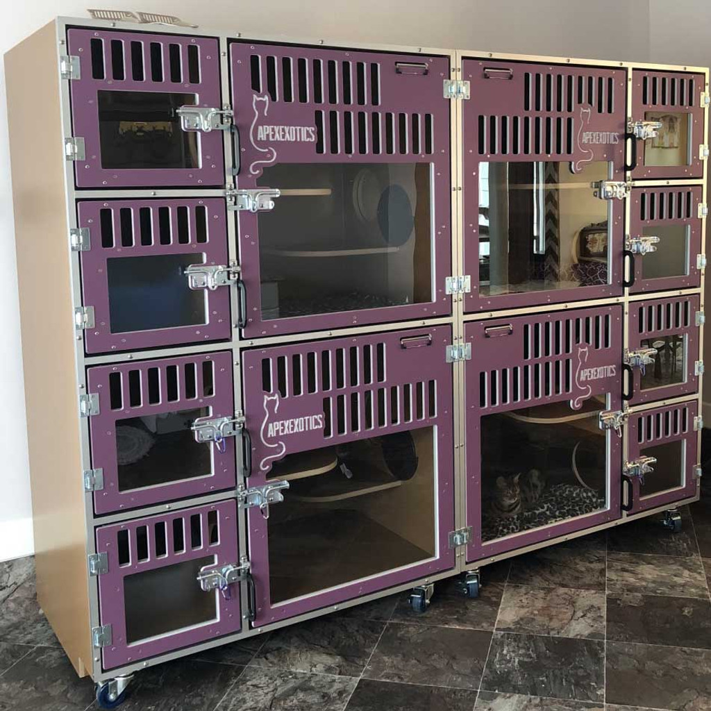 cat hotel cage-bank with custom gates.