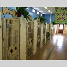Dog Kennel gates.