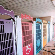 Colorful kennel gates.