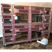 cat cage-bank for cat breeding.