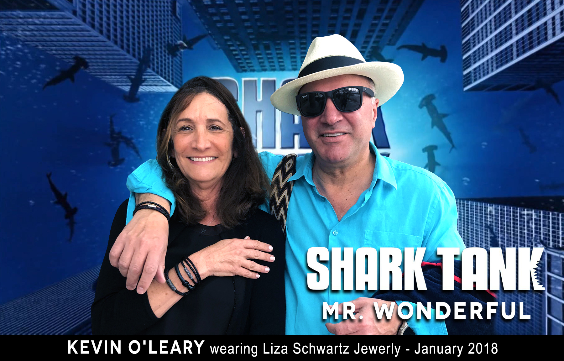 lizapress-mr-wonderful-shark-tank-celebrity-page.jpg