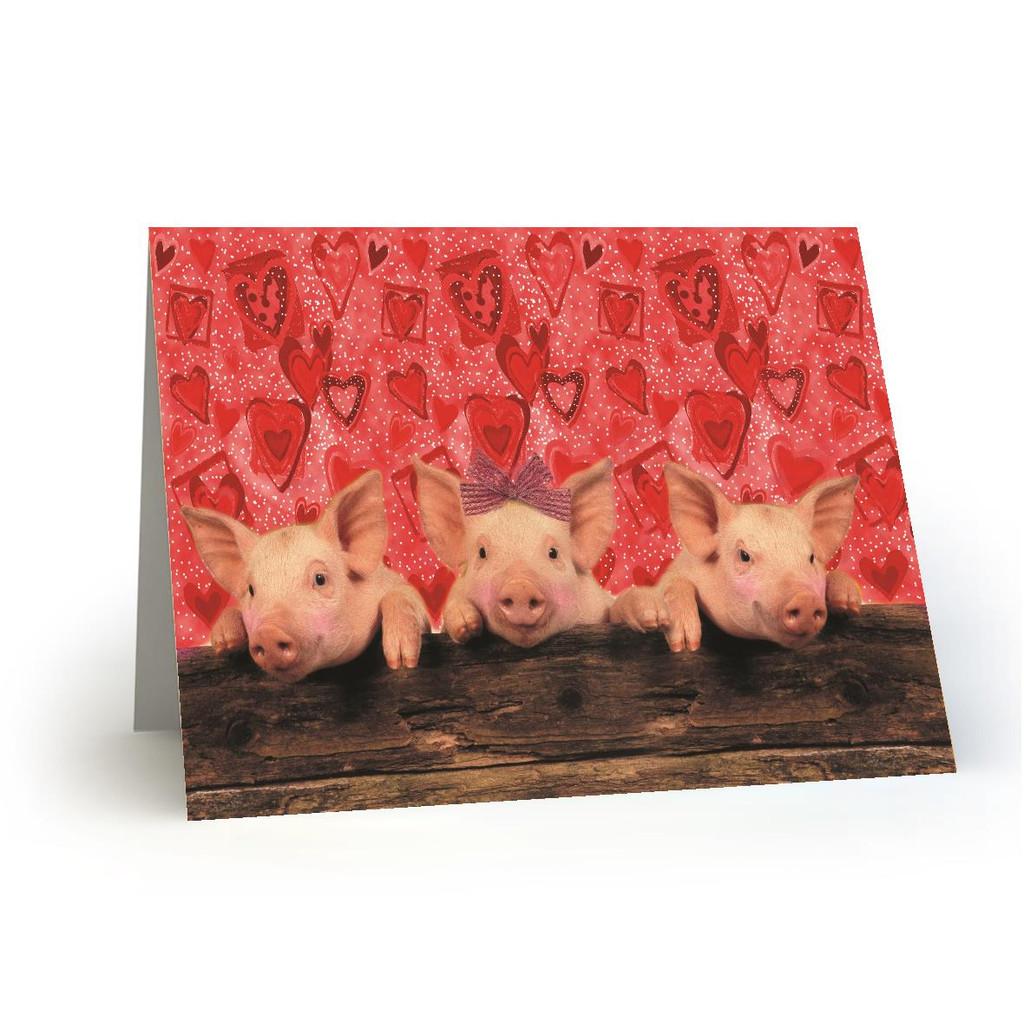 Pig-a-boo-3