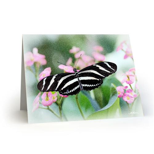 Butterfly 4 - HP100