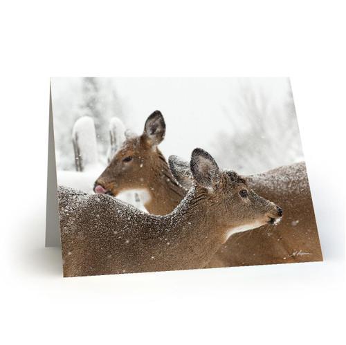 Deer 4 - HP100
