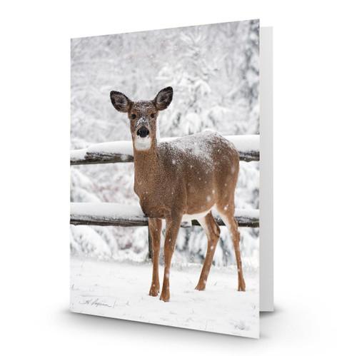 Deer 5 - HP100