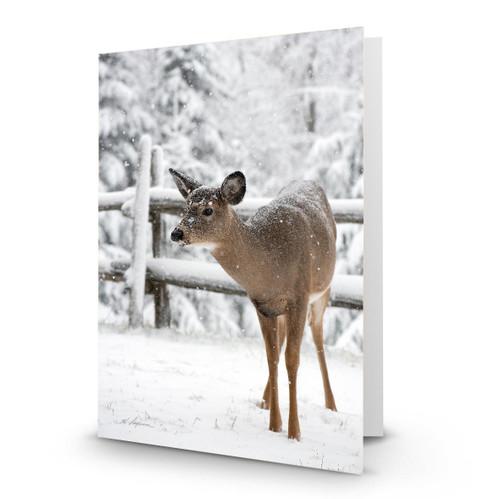 Deer 6 - HP100