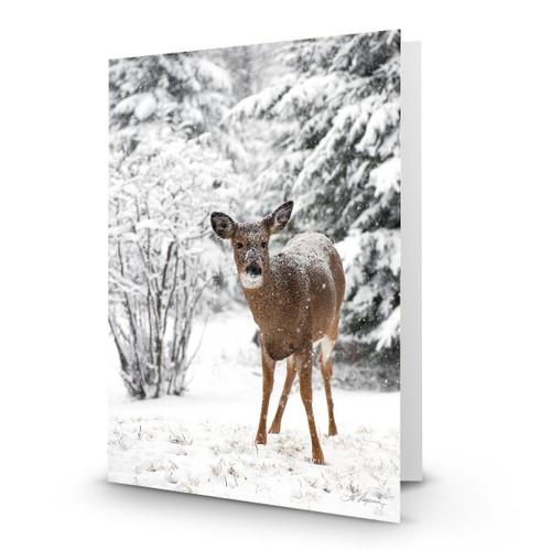 Deer 8 - HP100