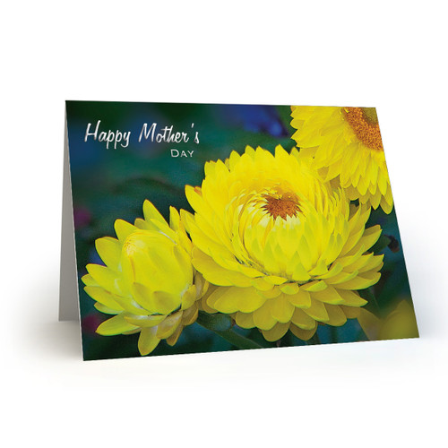 Happy Mothers Day - Yellow Strawflowers - HP100