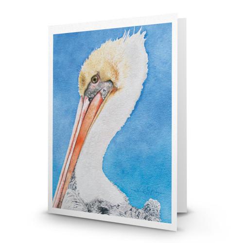 Jack Pelican - JN100