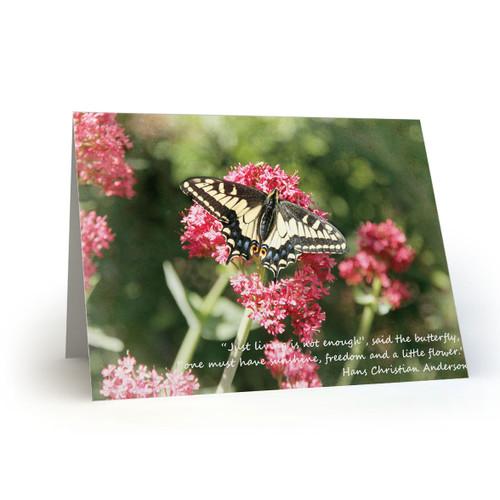 Butterfly Vignette - CB100