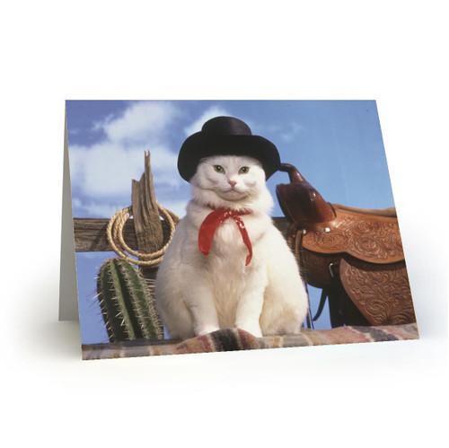 Western Cat