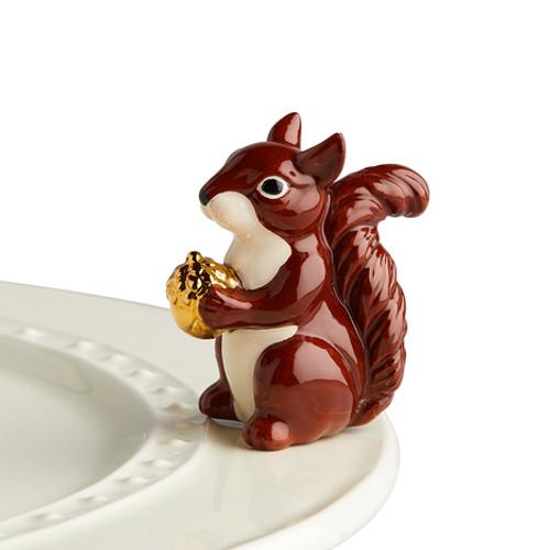 Mr. Squirrel Mini