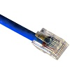 cat5-cable-crimped-blue-small.jpg
