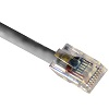cat5-cable-crimped-gray-small.jpg