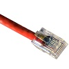 cat5-cable-crimped-red-small.jpg