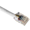 cat5-cable-crimped-white-small.jpg