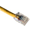cat5-cable-crimped-yellow-small.jpg