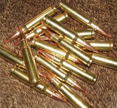 308 WIN Thunder Ammo Premium Hunting Ammo Hornady SST 165 gr 250 Rounds