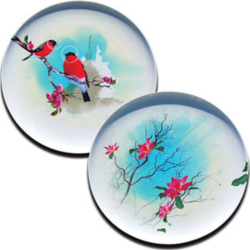 Birds of a Feather Plate Set 1