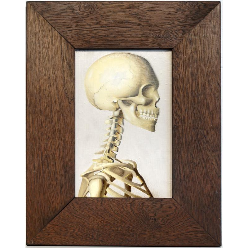 Skeleton by Veng