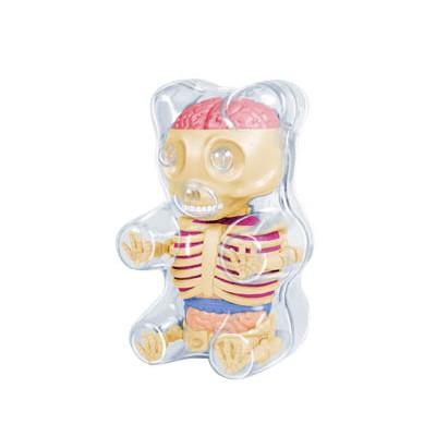 Mini Gummi Bear Anatomy : Clear - myplasticheart