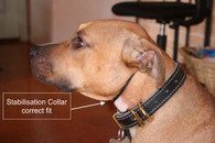 Stabilisation Collar