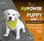 K9 Power Puppy Gold