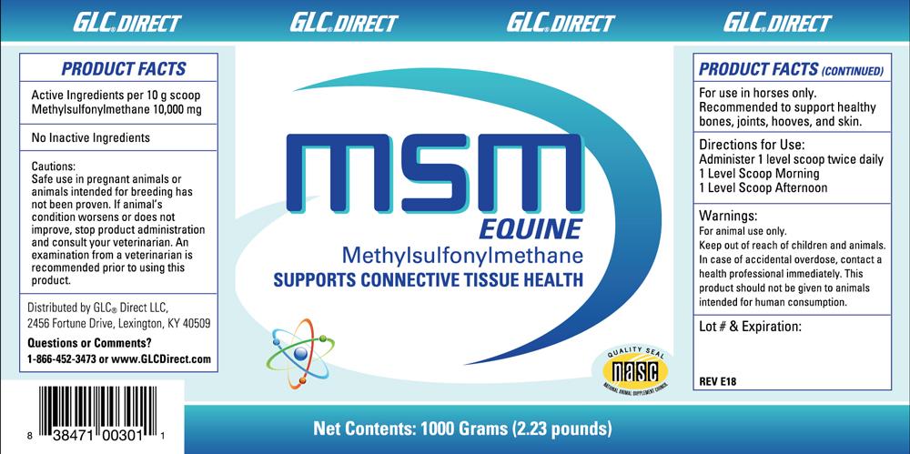 new-msm-equine.jpg