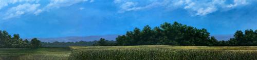 Hudson Allen Studios HA2104 - Miller's Cornfield Backdrop