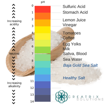 Healthy Salt and Baja Gold Salt