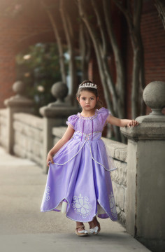 """""""""""""""""PURPLE PRINCESS DRESS COSTUME PRE ORDER"""""""""""""""""