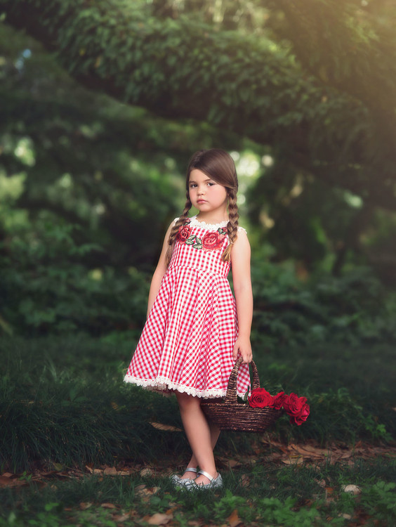 MADELEINE DRESS-RED GINGHAM