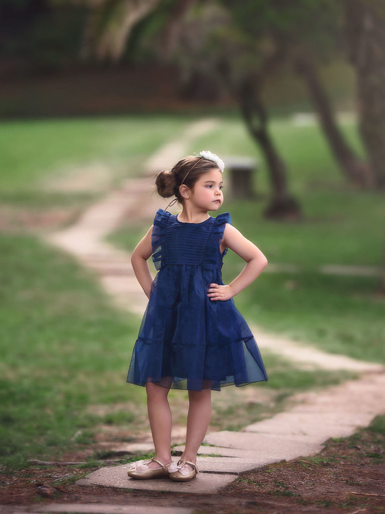 """""""""""""ALICE DRESS NAVY BLUE"""""""""""""