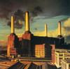 PINK FLOYD Animals - 1977 Release w/NM Vinyl, Original Gate-fold Cover