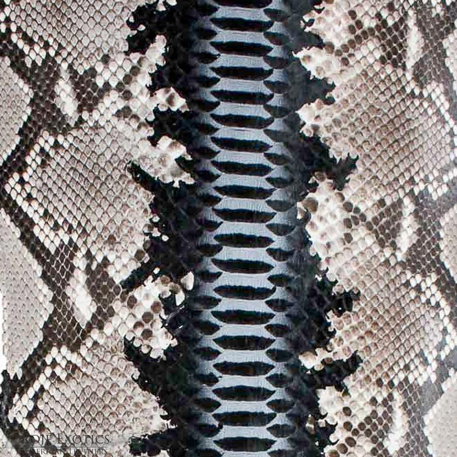 Python Back Cut  - HandPainted - (17B09-A)
