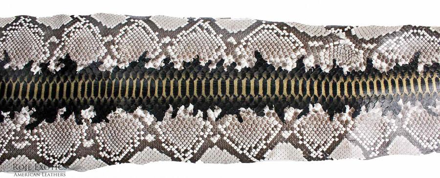Python Back Cut  - HandPainted - (17B09-B)