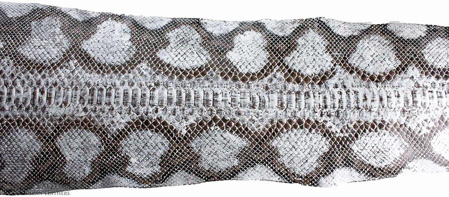 Python Back Cut  - HandPainted - (17B11-A)
