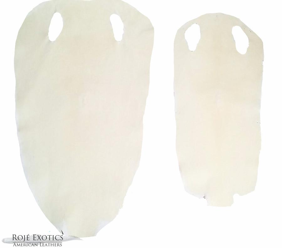 Stingray - White Shagreen - Sanded & Polished